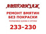 Логотип avtovisage
